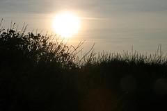 Dusk (Chronur) Tags: blavand denmark sunset sun romantic