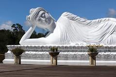 The White Buddha, Bali (scinta1) Tags: bali balinese statue white buddha buddhist head stonestatue reclining viharadharmagiri temple