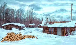 Tough winter . . .