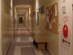 Collegium HCP (Hā-tsē-pē) 4: Room No. 139 (Door). Taken by NR (Nagisa Rządek (busy)) Tags: canonpowershotsx130is poznan poznań poland polska ポーランド ポズナン wildadistrict ulica28czerwca1956r uniwersytetimadamamickiewiczawpoznaniu hcegielski–poznań collegiumhcp collegiumimhipolitacegielskiegowpoznaniu modernism モダニズム interior インテリア ポスター 消火器 fireextinguisher poster 提灯 lantern corridor 廊下 ドア doors door 掲示板 adammickiewiczuniversityinpoznan greaterpoland wielkopolska ヴィエルコポルスカ