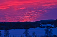 Sunset (Stefano Rugolo) Tags: stefanorugolo pentax k5 pentaxk5 smcpentaxm100mmf28 ricohimaging sunset blue pink sky clouds winter barn vintagelens pentaxprimes primelens hälsingland sweden sverige