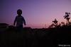 (yomoneko1) Tags: dusk dandelion sigma dp1 merrill boy child lotusflower sunset field sun