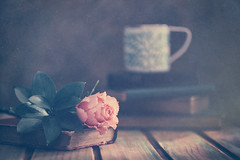 Pleasures (Ro Cafe) Tags: rose stilllife books tea mug table wood light romantic rustic textured nikkormicro105f28 nikond600