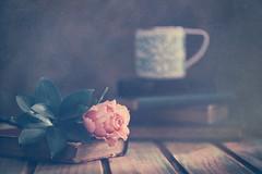 Pleasures (Ro Cafe) Tags: rose stilllife books tea mug table wood light romantic rustic textured nikkormicro105f28 nikond600