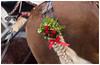 Horse Beauty & Human Inspiration (Only Snatches) Tags: bavaria bayern berching deutschland germany horse mood morgen natur neumarkt oberpfalz pferd romantisch rossmarketberching rossmarktberching skuril tiere upperpalatinate animals bizarre morning nature romantic