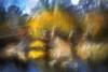 Bridge over the lakes in Verulamium Park, St Albans (RCARCARCA) Tags: spring willow bridge photoartistry reflections canon rocks trees 85mml verulamium stalbans bulrushes railings grunge verulamiumpark 5diii park reeds sky clouds lakes