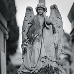Angel of Death thumbnail