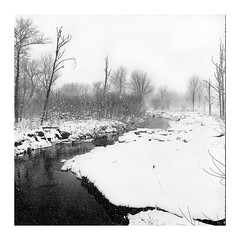 Rolleixflex-ploration by a Snowy Day (SebRiv) Tags: mediumformat studioargentique argentique analog ishootfilm 6x6 square rolleiflex28f easterntownships canada quebec knowlton rolleiflex