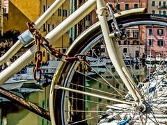 Antichi legami (Fabio Pratali LI) Tags: livorno bike fossi catena