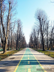Bucharest 2018, Herastrau Park.