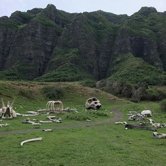 Skull Island (colonelchi) Tags: iphone 7 iphone7 iphone7plus apple phone smartphone trip vacation family wedding weekend tropical island familyvacation familywedding hawaii hawaiianisland hawaiianislands oahu northshore winter wintertrip islandgetaway getaway relaxation relax beach shore green tropicalisland islands unitedstates unitedstatesofamerica kualoa ranch tour movie film set shoot bus kualoaranch movietour filmset location practical filmlocation television tv tvset televisionlocation filmsettour filminglocation