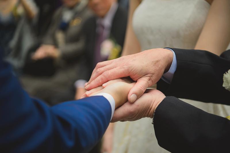 婚攝,維多麗亞戶外婚禮,維多麗亞婚宴,維多麗亞婚攝,半生不熟蘋果誌,婚攝推薦,Alba sposa,VVK婚紗,MSC_0017