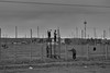 San Quintin | BCS, Mexico | 2018 ([DV8] David Patrick Valera) Tags: mexico loreto summicron35 leica wetzlar reddot street streetphotography humancondition photographers leitzpark baja leitz rangefinder leicam10