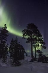 IMG_6918 (lucas.demierre) Tags: finlande finland laponie lapland ciel nocturne étoiles aurore boréale nature nuit star sky night northern light inari inarijärvi lac gelé snow neige canon 700d 14mm samyang f28 aurora