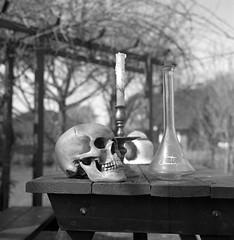 Making of ... (Rosenthal Photography) Tags: ff120 rodinal15021°c11min 6x6 schwarzweiss anderlingen asa400 familie mittelformat 20180401 garten städte ilfordhp5 rolleiflex35f bw analog bnw dörfer siedlungen makingofawetplate garden home sun sunny skull bottle candle candleholder fkd 13x18 industar i51 210mm f45 f11 rolleiflex 35f sk schneiderkreuznach xenotar 75mm f35 ilford hp5 hp5plus rodinal 150 epson v800