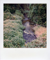 Creek (m.ashe7) Tags: polaroid maryland instantfilm color onestep2 polaroidoriginals outdoors