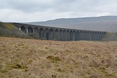 """Icon of the North (37190 """"Dalzell"""") Tags: ribbleheadviaduct bleamoor"""