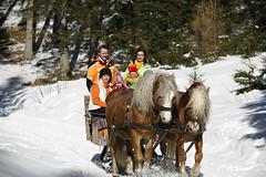 Pferdeschlittenfahrt (Naturpark Almenland) Tags: almenland naturpark steiermark oststeiermark urlaub alm teichalm sommeralm winter wintersport natur