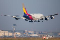 Asiana Airlines - Airbus A380-841 HL7641 @ Frankfurt Main (Shaun Grist) Tags: hl7641 asiana airbus a380 superjumbo shaungrist fra eddf frankfurt germany airport aircraft aviation aeroplanes airline avgeek