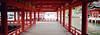 嚴島神社 (Steve only) Tags: hasselblad xpan 445 454 45mm f4 rangefinder kodak pro image 100 film epson gtx970 v750 landscape snap japan 廣島 宮島 嚴島神社 rf