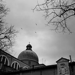 (Eirik Holmøyvik) Tags: plaubel makina analog analogue venice venezia church kodak tmax 400 birds sky cross film ishootfilm