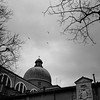 (Eirik Holmøyvik) Tags: plaubel makina analog analogue venice venezia church kodak tmax 400 birds sky cross film ishootfilm
