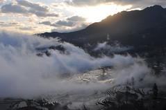 DSC_0627 (tcchang0825) Tags: terrace hani yunnan yuanyang sunrise