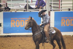 IMG_2010 (melodavis@sbcglobal.net) Tags: rodeohouston 2018 rodeo livestock heifer farmlife steer saddlebronc bronc bull bullriding calfscramble alpaca