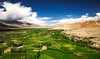 Ladakh landscape (Castelaze_Studio) Tags: ladakh india himalaya himalayan asia green fields desert landscape thiksey leh valley mountain mountains sunny sun blue sky trees altitude travel tourism