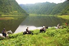Grand Etang Equestrian Farm , Saint-Benoit- pic EMMANUEL VIRIN