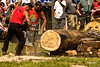 Darby-Loggers-Day-ISO-400,-248mm,-f-9,-1-1200sec (Gary O'Dell (sagebrushphotography)) Tags: darbyloggerrodeo loggerrodeo darbymontana hotsaw chainsaw