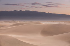 desert hues (Andy Kennelly) Tags: pink mesquite dunes death valley sunrise