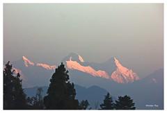 Himalayan Sunrise,Choukari (Anindya Roy Photography) Tags: uttarakhand himalaya mountain nature landscape india choukari chaukari nandadevi east maiktoli canon