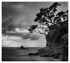 Pebble Bay (www.cornelia-schulz-photography.com) Tags: northisland newzealand northland beach bay sea blackwhite longexposure landscape