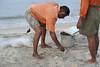 Cast net fisherman 4 (wfung99_2000) Tags: alleppey beach kerala india morning cast net fisherman arabian sea