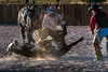 Decisive Moment (James Neeley) Tags: newmexico santafe arthurmeyerson coloroflight ranch action jamesneeley