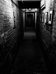 Basement / Sous-sol (CTfoto2013) Tags: iphone briques bricks architecture newengland musée museum massachusetts shadows ombre lumiere light escalier stairs perspective soussol basement monochrome blancoynegro blackandwhite blancetnoir noirrtblanc massmoca