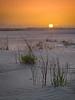 Delta Dunes (mikeSF_) Tags: california delta sacramento sanjoaquin river riovista brannan twichell sand dunes sunset brush pentax 645 645z fa150 150mm outdoor mikeoria
