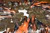 19 (Tribunal Regional do Trabalho da 4ª Região) Tags: trabalhoinfantil ação circuitodecorridas portoalegre 14042018 orla atletismo trtgaúcho justiçadotrabalho 4ªregião riograndedosul trt trt4 tribunal trabalho justiça judiciário trabalhista rs trtrs poderjudiciário brasil