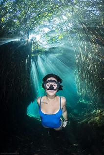 Freediver in Cenote Cristalino