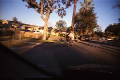 la13 (@eyesight22) Tags: lo la los angeles film 35mm art eye weed humand human
