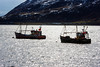 Ullapool 10 March 2018 00000.jpg (JamesPDeans.co.uk) Tags: forthemanwhohaseverything greatyarmouthyh ships highlands gb printsforsale boats fishingindustry buoy fishingboatregistrations lh37 floats objects greatbritain unitedkingdom transporttransportinfrastructure yh1 scotland britain ullapool fishingboats wwwjamespdeanscouk leithlh ropes europe landscapeforwalls jamespdeansphotography uk digitaldownloadsforlicence