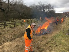 Pike, Michael, Stephen and Bob burn scrub at 6 signal 23Mar18