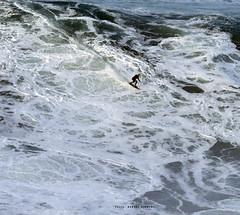 SEBASTIAN STEUTDNER / 8114LFR (Rafael González de Riancho (Lunada) / Rafa Rianch) Tags: surf waves surfing olas sport deportes sea mer mar nazaré vagues ondas portugal playa beach 海の沿岸をサーフィンスポーツ 自然 海 ポルトガル heʻe nalu palena moana haʻuki kai olahraga laut pantai costa coast storm temporal