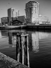 Hamburg (wolfgang.brinken) Tags: hafencity germany deutschland hamburg architektur lumix gf7 wolfgang brinken