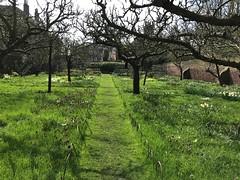 Fenton House, April 2018 (~U~) Tags: londonspring 2018 spring london