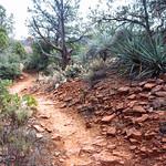 Red Rock State Park, Sedona thumbnail