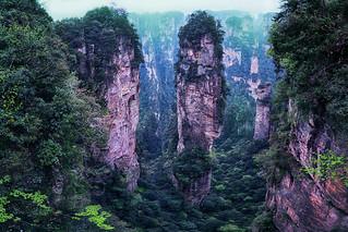Avatar Hallelujah Mountain 南天一柱