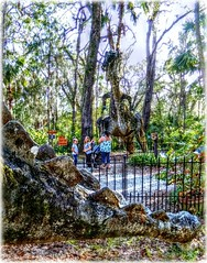 Look Out!- HFF! (Chris C. Crowley) Tags: lookout hff trex stegosaurus dinosaurs sculptures art sculpturesbydrmannylawrence bongoland sugarmillgardnes tourists people children woman sightseers portorangeflorida nature outdoors trees scenic fences