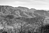 Big Witch Overlook B&W (esywlkr) Tags: blackandwhite bw landscape view brp blueridgeparkway northcarolina woods forest trees nature outdoors